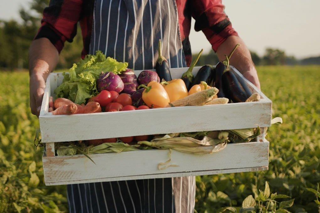 La filiera corta: una opportunità per agricoltori e consumatori